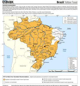 brazil-yellow-fever-lowres